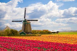 Accra, Ghana to Amsterdam, Netherlands for only $456 USD roundtrip