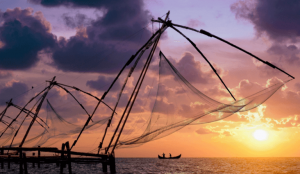 Non-stop from Abu Dhabi, UAE to Kochi, India for only $230 USD roundtrip