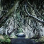 Magnificent Marvels of British Nature – Road Tripping across Britain