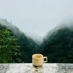 Solo Travel Ideas For Coffee Enthusiasts