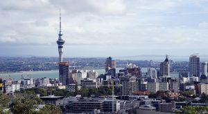 Top Casino Options in New Zealand