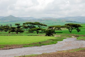 Non-stop from Milan, Italy to Addis Ababa, Ethiopia for only €298 roundtrip