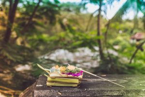 Why your Vacation to Bali is Incomplete Without Seniors Travel Insurance?