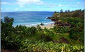 United: San Francisco – Kauai, Hawaii (and vice versa). $278 (Basic Economy) / $338 (Regular Economy). Roundtrip, including all Taxes