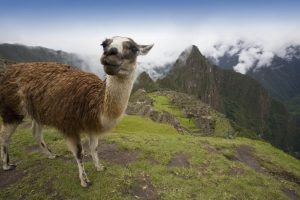 XMAS & NEW YEAR: Las Vegas to Lima, Peru for only $375 roundtrip (Oct-Mar dates)