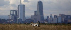 Cheap Flights To Nairobi Kenya From New York $581 Return