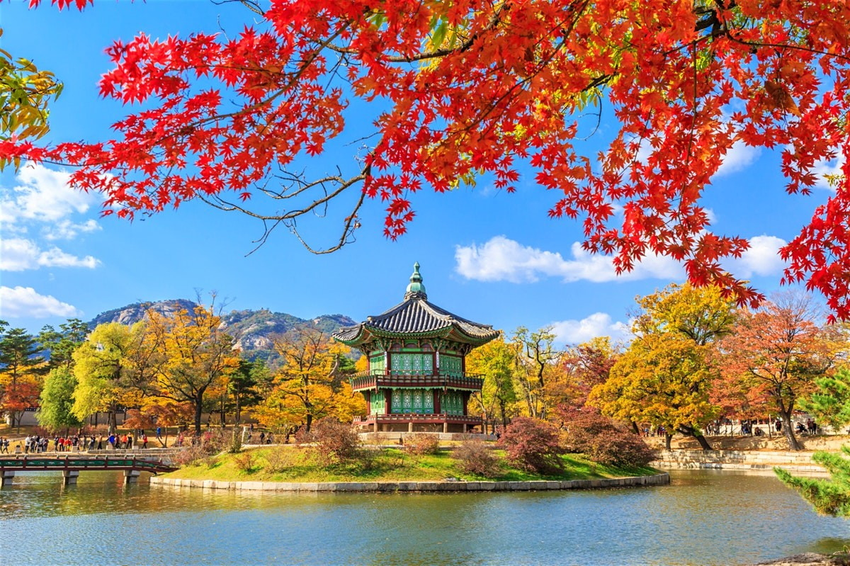Cheap Flights To Seoul Korea From Los Angeles $425