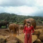 Adventure Travel Insurance-From Crocodiles to Cholera