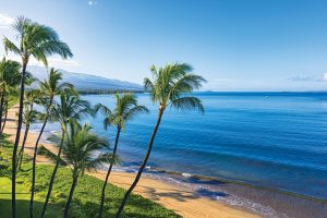Cheap Flights To Maui Hawaii From Vancouver Canada $C338 Return