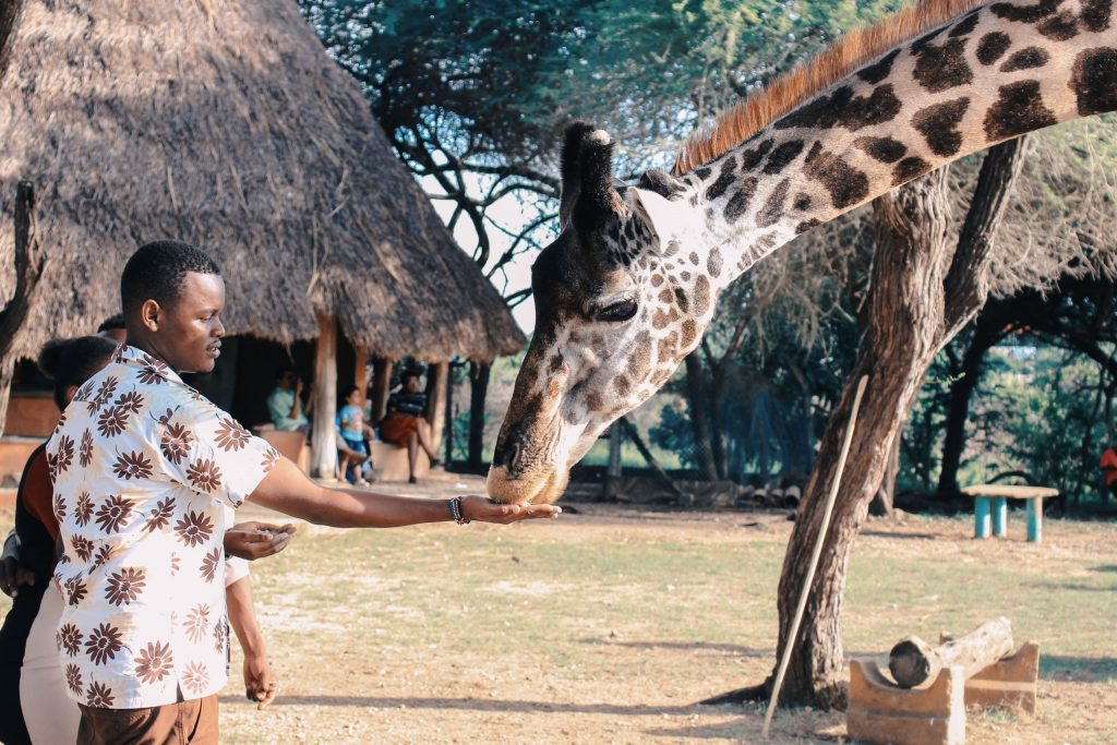 Discover the Top 5 Things to Do and See in Kenya