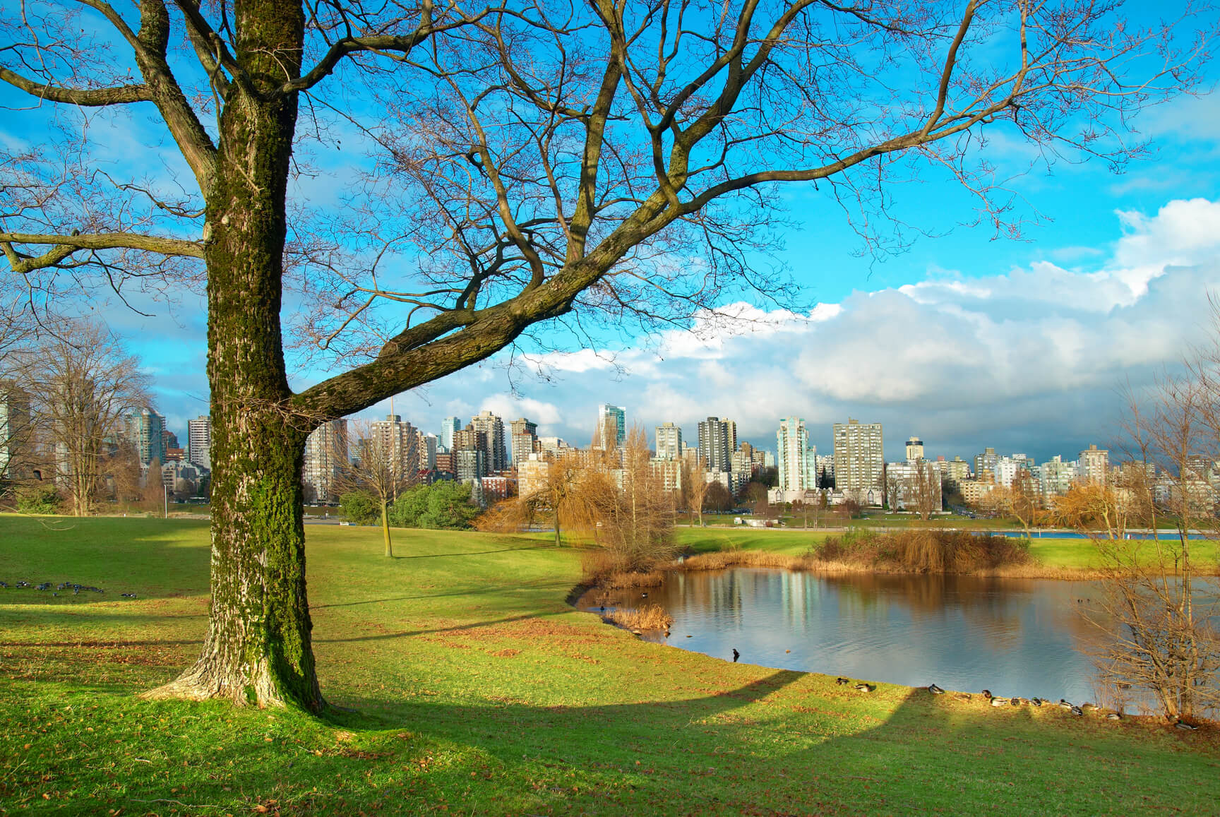 Non-stop from Paris, France to Vancouver, Canada for only €333 roundtrip (Nov-Dec dates)
