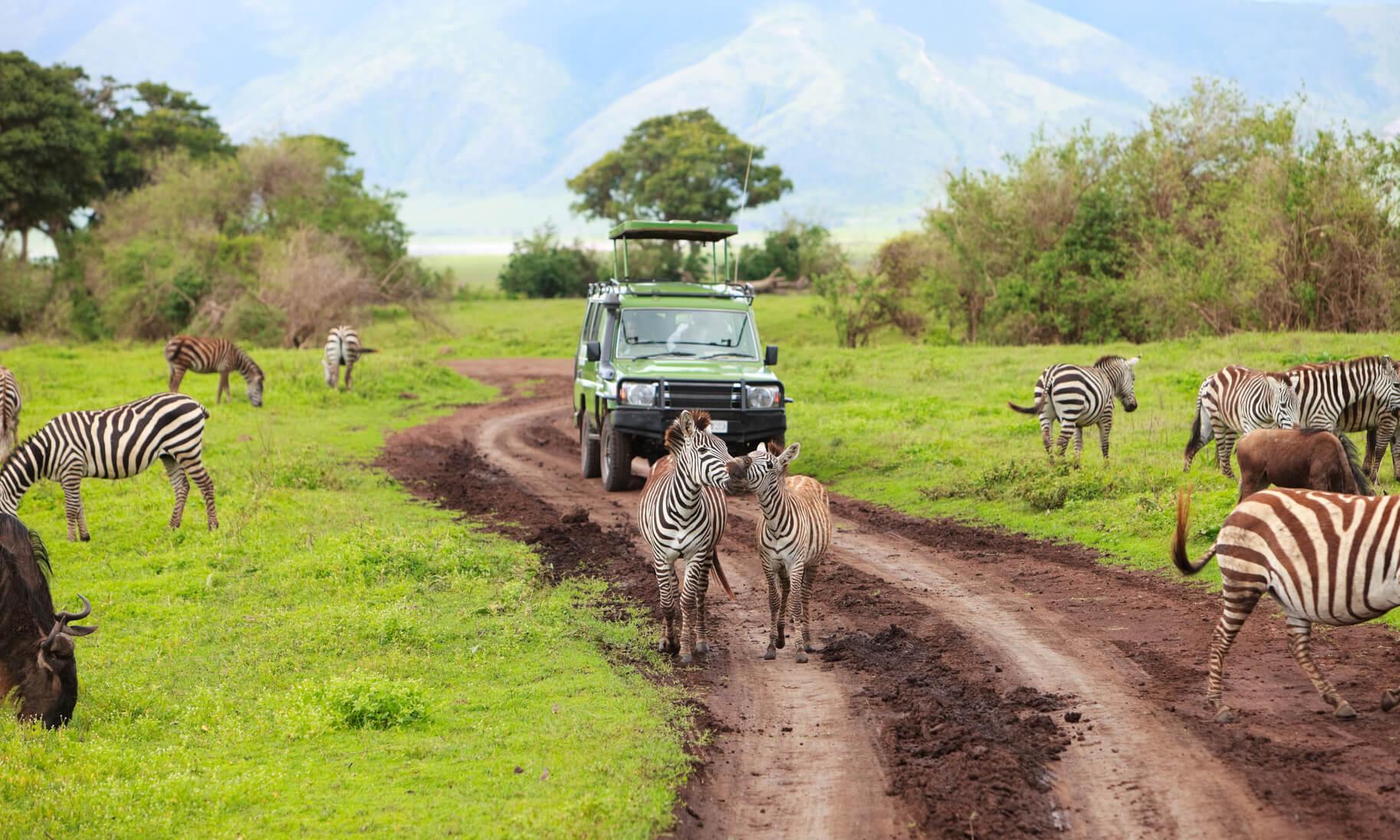 Las Vegas to Nairobi, Kenya for only $565 roundtrip (Aug-Sep dates)