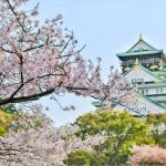 Japan: Making Your Trip More Vibrant